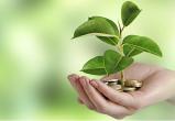 Зачем нужен экологический налог. Мнение эксперта