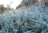 Ой, мороз, мороз... В Вологодскую область придут очередные холода с заморозками