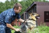 Двух пропавших подружек в Череповце разыскала полицейская овчарка Интегра