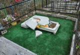 В Сокольском районе осквернили кладбище
