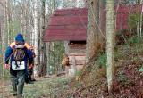 Под Вытегрой найден живым пенсионер, почти три дня проплутавший в лесу