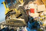 40-летнюю свалку отходов ФМК в Череповце ликвидируют по суду