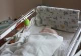 Отец подбросил новорожденную на крыльцо вологодского роддома