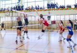 В Вологде проходят Всероссийские соревнования студенческих команд по волейболу