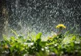 Погода меняет настроение. Вместо холода — тепло с дождем?
