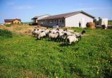 В Вологодской области на участках для фермерского хозяйства разрешат строить дома