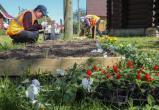 Лучшие юный садовник и столяр на конкурсе в Вологде получили в подарок мобильные телефоны