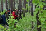 Поиски пропавшего мужчины из Череповецкого района остановлены