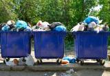 Регоператор «Аквалайн» пытался через суд оспорить решение гордумы