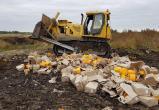 Роспотребнадзор предложил запретить уничтожение продуктов