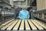 Вологодское мороженое завоевывает рынки Азии и Африки