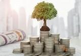 Куда вы предпочли бы вложить гипотетические свободные деньги?