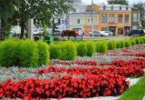 В Вологде стартовал прием заявок на участие в проекте «Цветущий город»