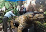 Прародина «сухонских ящеров»: фигуру самого крупного хищника пермского периода привезли в Тотьму