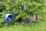 С 1 июня В Вологодской области телефонные звонки бесплатны