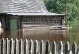 МЧС: затяжные дожди в Вологодской области могут привести к подъему уровня воды в реках