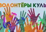 Вологжане могут включиться в добровольческий проект «Волонтеры культуры»