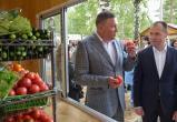 В посёлке Майском открылся торговый городок под брендом «Вологодская ярмарка»