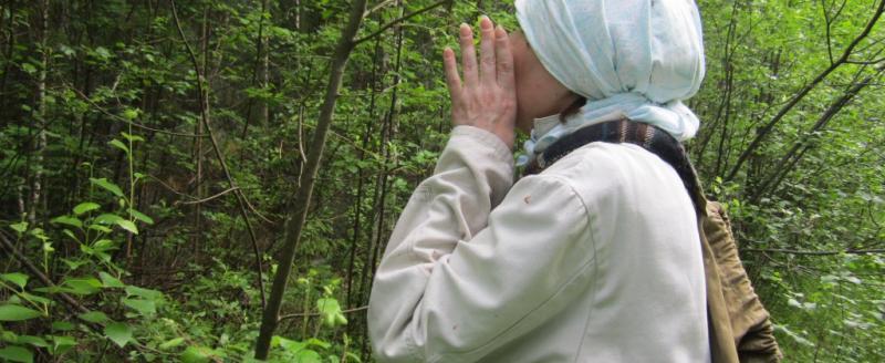 Три пенсионерки провели ночь в лесу