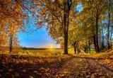 10 сентября теплая погода в Вологде установила рекорд