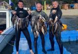 И рыбку добыть, и кубок привезти: вологжане стали лучшими в подводной охоте