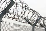 Череповецкий «вор в законе» заключен под стражу