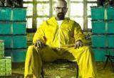 Изготовителя наркотиков из Грязовецкого района отправили в тюрьму