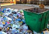 Произойдет ли чудо: понизят ли на Вологодчине мусорные тарифы?