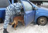 В Шекснинском районе служебная собака помогла найти наркотики в авто