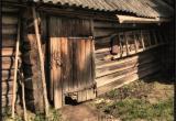 Тело юнармейца из Вологды нашли в сарае