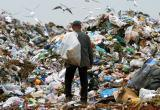 Власти Вологодчины пообещали разобраться с мусором
