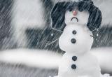 Синоптики пообещали значительное потепление и снег с дождем