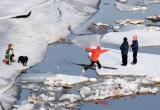В Череповце первые штрафы за выход на лед заплатят родители подростков