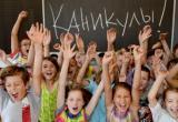 Школьные каникулы собираются проводить по-новому