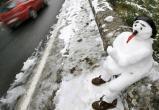 Тепло останется в Вологодской области на выходные дни