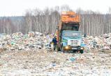 Что поможет решить «мусорную проблему» в России?