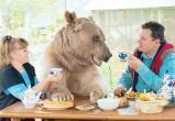 Медведи Вологодчины вновь выходят к людям