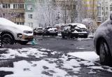 Весна пришла зимой. Температура в Вологде 24 декабря установила несколько рекордов