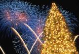 В новый год небо украсят пионы, хризантемы и праздничная ель