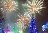 На время новогодних праздников на ряде улиц Вологды ограничат движение
