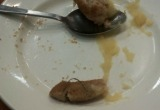 Школьников Вологды кормили котлетами с проволокой